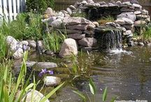Build a Garden Pond / Water Garden / How to build a garden pond on your backyard?  ►1: Delineate and dig your Aquatic Garden  ►2: Installing geotextile fabric and pond liner  ►3: Fill the backyard pond  ►4: Landscape Water Garden borders  ►5: Garden Pond Landscaping  ►6: Planting aquatic plants  ►7: Winterizing a Pond and De-Icer system  ►8: Tips - Filters - Pumps and Pond Supplies  ►9: Fish and fauna