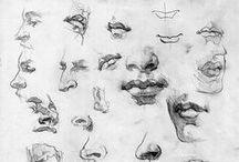 Anatomy - Human / for Figure Drawing