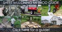Sheet Mulching - How to Sheet Mulch / Sheet Mulching Method with cardboard and wood chips, ramial chipped wood or organic mulch. Step by step how-to guide with illustrations.