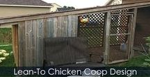 Backyard Chicken Coop Plans - Design Idea / How to build a Backyard Chicken Coop. Idea for an Urban chicken coop. Lean-to chicken coop design. Slanted roof idea and nesting boxes idea. Door inside coop for nest area.