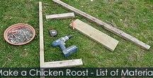 How to Build a Chicken Roost - Steps / Step by step instructions for making a wooden chicken roost. Roosting bar, support. How to attach chicken roost to chicken coop or aviary.