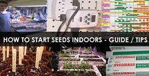 Starting Seeds Indoors / How to start seeds indoors. DIY Instructions. Methods, equipment, tips, supplies and ideas. Indoor gardening under grow lights.