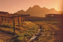 Wine Valleys / Fabulous views of wine-producing valleys