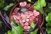 Buraklove / Buraklove to zdrowe, ekologiczne, naturalne, ręcznie robione przysmaki dla psa. http://psiesmaki.blog.com