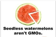 GMO Basics / by GMO Answers