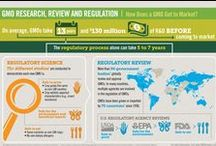 GMO Safety / by GMO Answers