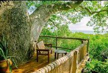 Chole Mjini, Mafia Island, Tanzania / Chole Mjini is a jungle-island fantasy-getaway, tucked away among historic ruins on Chole Island, situated in the middle of the Mafia Island Marine Park, Tanzania, East Africa.