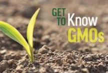 Get to Know GMOs series / During October, GMO Answers encourages you to Get to Know GMOs—ask your toughest questions and join the conversation online. Each week we'll post new information to help you get to know GMOs and better understand the role of biotechnology in agriculture.  / by GMO Answers