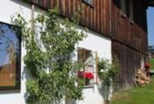 Haidl-Madl Vacation Rental / The three green vacation rentals of the hostess Ingrid Haidl-Madl are at home at 1000 meters in the beautiful Lower Bavaria, in the south east of Germany. Staying at Haidl-Madl means arriving, unpacking and sighing.