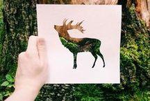 A arte da natureza / Criativas fotos da natureza