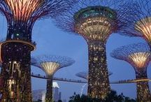 Solar Powered Supertrees