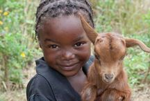 Africa / by Cafer Yazıcı