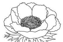 DOKUMENTASJON - tegne blomster