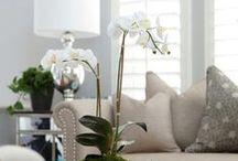 HOME DECOR: lounge