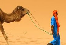 ❂ Morocco ❂