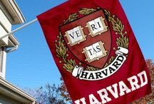Harvard / by Manush Mobarhan