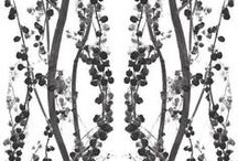 Suite Inspo: Wallpaper
