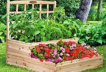 Gardening & Backyard Stuff / Ideas for my backyard & my garden / by Kathy Kuegler