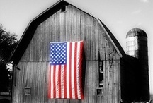 America the Beautiful / I Love America. I believe that this country is and was based on freedom and religion helped build it and guide it.  I believe that we need to take back our country from those who want to tear it down. LET FREEDOM RING!  / by Gail Parsley