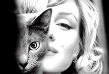 People & cats / Ce tableau répertorie des chats accompagnés de personnalités du monde entier