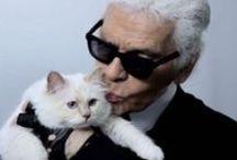 Choupette Lagerfeld / Choupette est un sacré de Birmanie et le chat du créateur Karl Lagerfeld. Et ses ronrons lui ont inspiré une nouvelle ligne de vernis a ongle bleu !