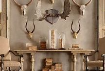 Rustic Glam Decor / chalets, natural history, cosiness and rustic decor