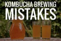 Kombucha Making / If you love Kombucha and DIY, you're in the right place.