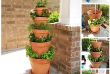 Container Gardening / Sometimes growing plants in a garden isn't possible, or even desirable. Growing plants in containers takes a little more know-how. This is a board filled with information on how to keep your container plants happy and healthy!