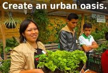 Urban Gardening / You don't need acres and acres of land to be a gardener! Growing plants on small plots, and even in apartments is easy to do! Here are some useful ideas to create an urban oasis!