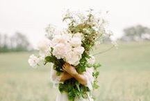 luv flower