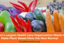 Resources and Information / Where to learn more about plant based, whole foods way of eating.