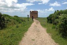 Tor Caldara / An ancient tower near Anzio