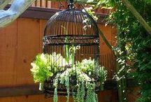 ~ Garden inspiration ~