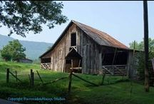 Out Buildings: Barns, sheds, garages