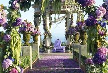 Wedding Theme / Beautiful an Elegant with Class