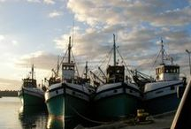 #Gansbaai / Gansbaai is home to the Great White Shark and White Shark Diving Co.... but there's much more on offer.
