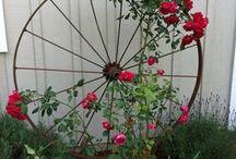 Garden plan(t)s