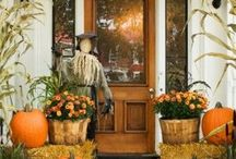 Fall Theme: Decoration & Holiday Ideas / Fall DIY Decorations: Everything Fall plus Thanksgiving Holiday Decor Ideas!