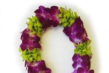 Hawaiian Leis / There's nothing like a fresh Hawaiian lei. As the cool, fragrant flowers touch your shoulders, it's like an embrace from the islands.
