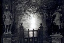 Thrillers/horrors/criminal stories - inspirations