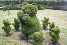 ogrodnictwo , sielsko - misielsko :) / ogrodnictwo , sielsko - misielsko :)