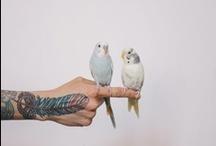 Tattoos yes pls.