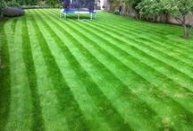Garden Maintenance / Lawn mowing, weeding, pruning, planting ...