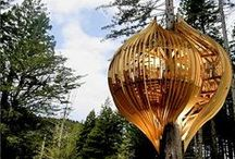 Treehouses / Treehouse architecture / by Modlar