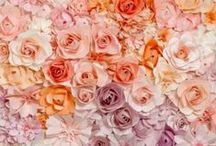 Romanttinen sisustus / Tästä taulusta löydät tapetteja, jotka sopivat romanttiseen sisustamisen.