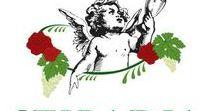 Tabu D.O.Monterrei y Lope Vinos&Gourmet en Madrid / Bodega TABÚ nace en O Rosal-Oimbra,Ourense,situada en le frontera de Galicia con Castilla y Portugal. Su producción  exclusiva de tan solo 30.000 botellas, entre Tinto, Blanco y  Barrica, (este envejecido en las mejores maderas de roble), consigue que en solo unos años se reconozca el esfuerzo. Apuesta por lo tradicional, lo ancestral y sobre todo, el amor el trabajo junto con el agradecimiento a la tierra de Monterrei que nutre las cepas que hacen este caldo tan exquisito llamado STIBADIA