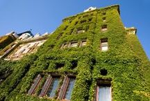 Housing / Eco-Friendly & Off-Grid Housing Ideas