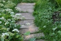 キセツクラシの庭