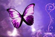 borboletas / by fatima moniz