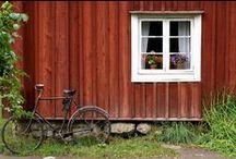 Summer Home Inspiration
